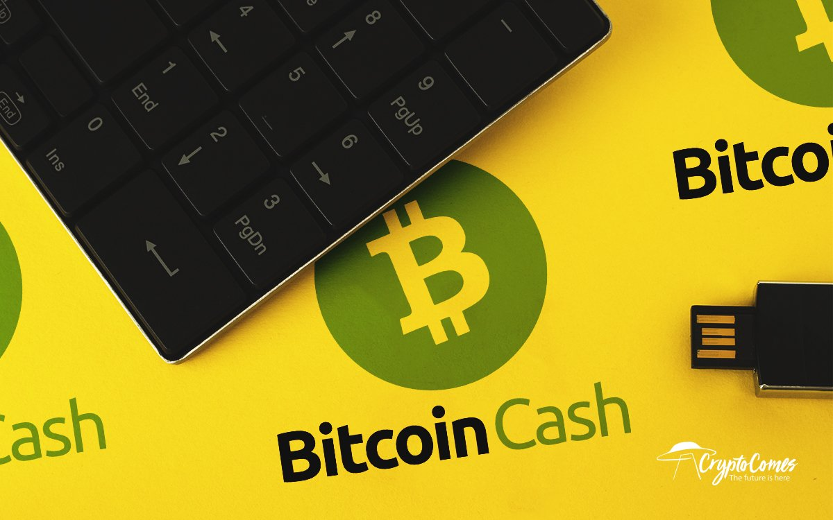 Bitcoin Cash Price Analysis 2019-20-25 — How Much Might BCH