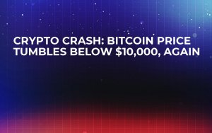 Crypto Crash: Bitcoin Price Tumbles Below $10,000, Again