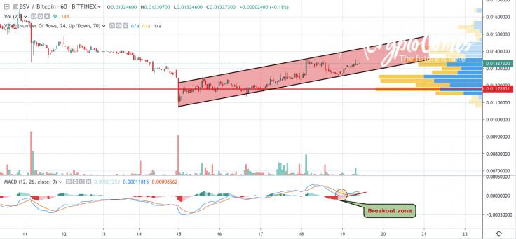 BSV/BTC chart by TradingView